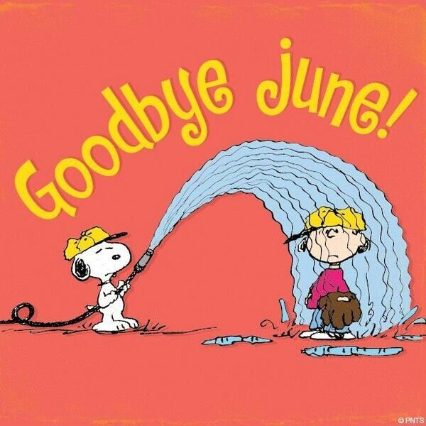 Image result for goodbye  june images peanuts