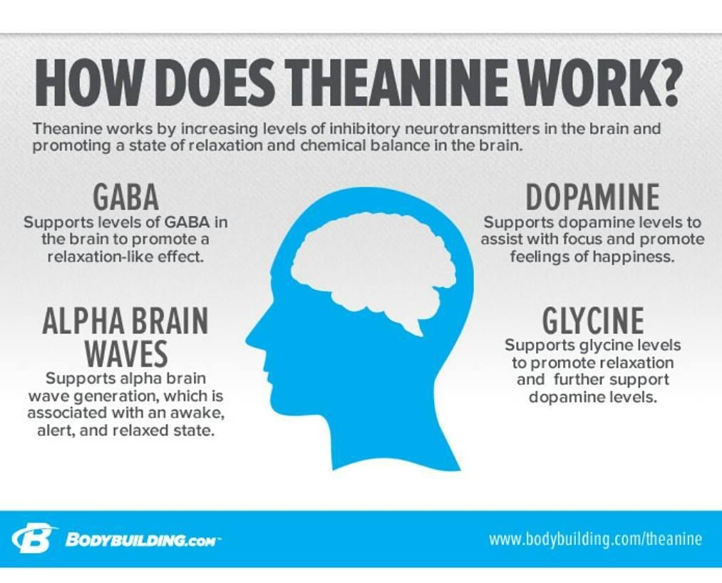 L-Theanine is an amino acid found in the green tea plant that helps ...