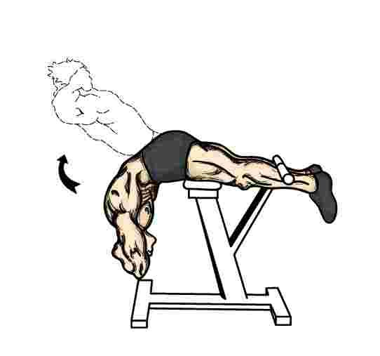 15 Simple but Powerful Back Exercises to Ease Stiffness and Lower ...