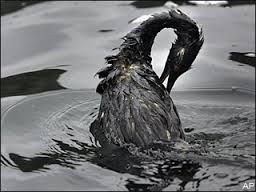 Although, oil drilling can provide us with products we need, it releases pollutants into our atmosphere and can even lead to events such as oil spills.