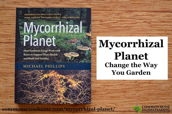 Mycorrhizal Planet shifts the focus from killing insects and fighting disease to building vigorous, thriving ecosystems with plant and fungi partnerships.
