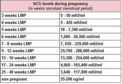 Beta HCG Levels in Early Pregnancy