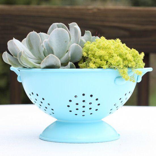I gave this old colander a few coats of spray paint, and she quickly became a beautiful succulent planter!