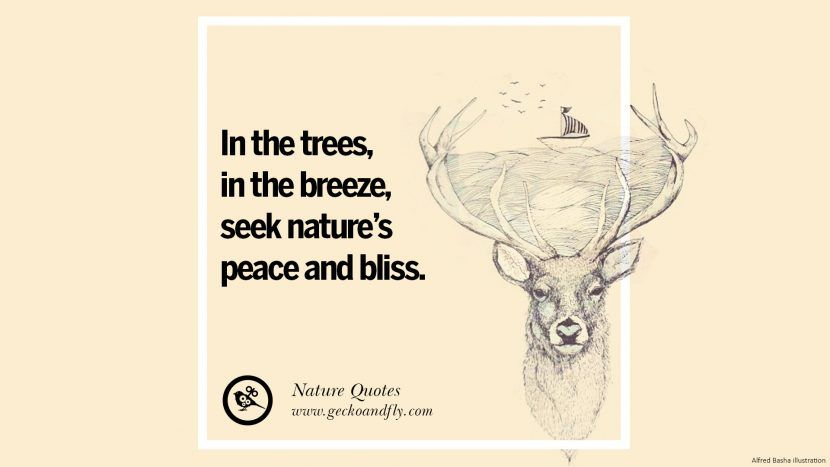 Save Mother Nature Quotes