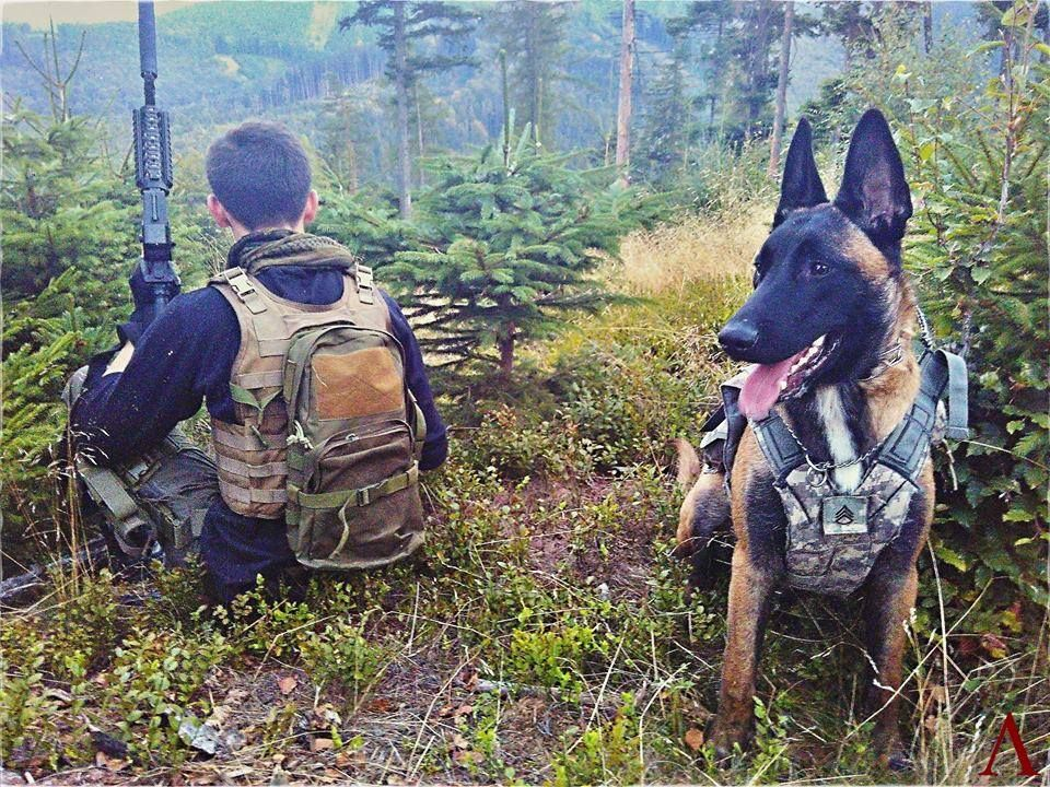 K9 Commando Soldier Pair From Czech Republic Military Working