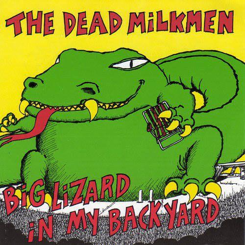 Big Lizard, Album Covers