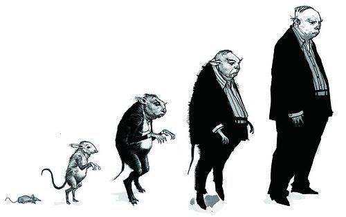 Peter Pettigrew Harry Potter Creatures Harry Potter Drawings Harry Potter Sketch
