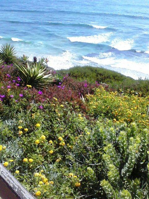 SRF Meditation Garden (Swamiu0027s), Encinitas, San Diego, California