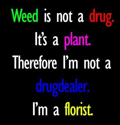 Quotes About Drugs Entrancing Drugs Quote Weed Is Not A Drugit's A Amazing.so Amazing