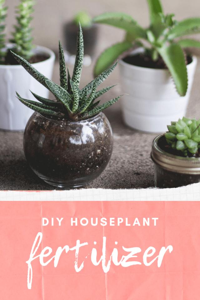 Diy Houseplant Fertilizer Make Your Own In 2020 400 x 300