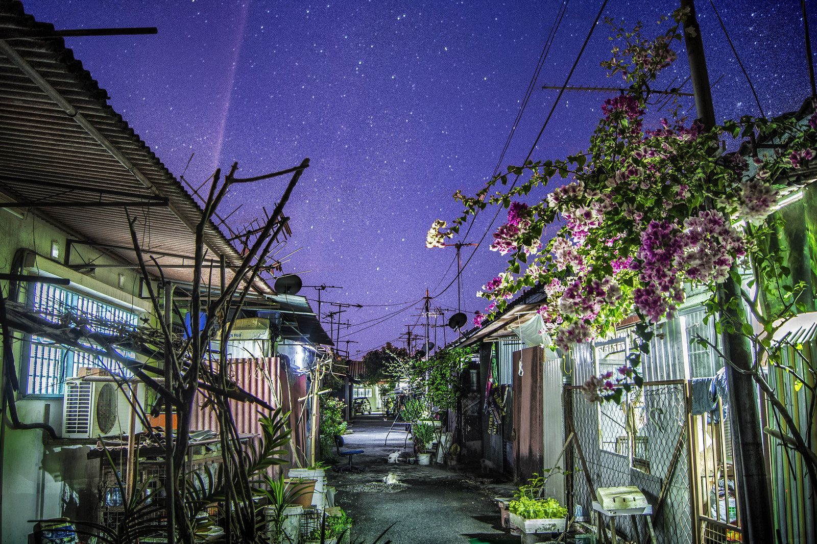 """Yong Lin Tan, 19, Malaysia — """"Back alley"""" 