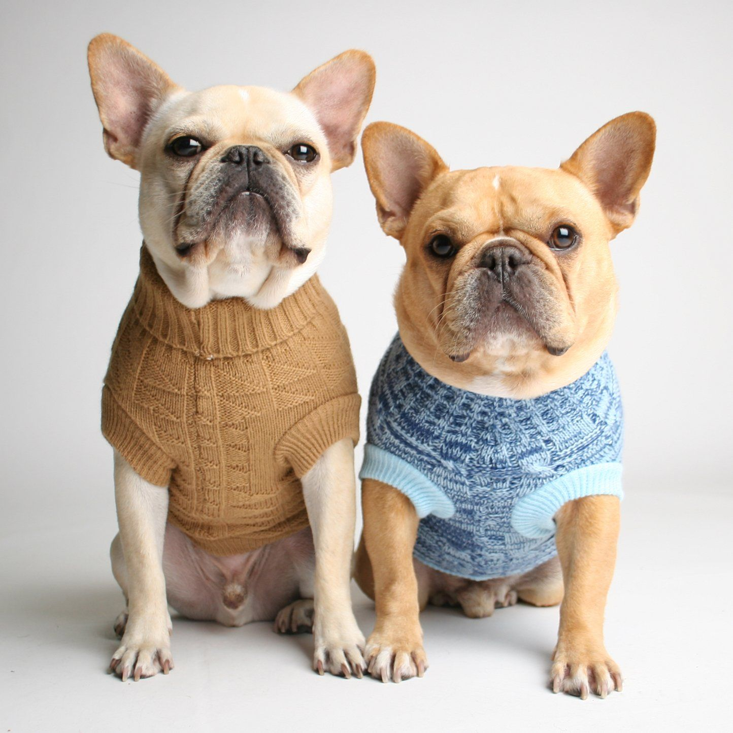 Fruit Stripe Dog Sweater Cute French Bulldog Dog Sweaters