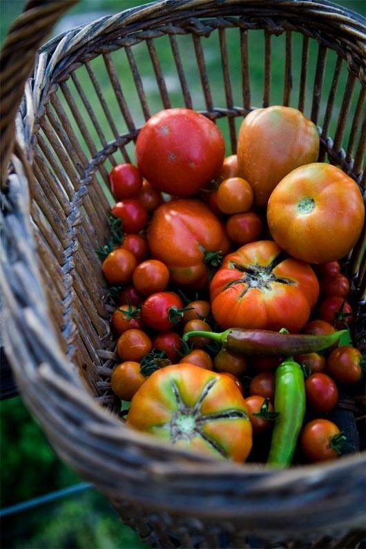 #thevegetablemarket #inspiracion #vegetables #motivacion #ejercicio #saludable #adelgazar #verduras...