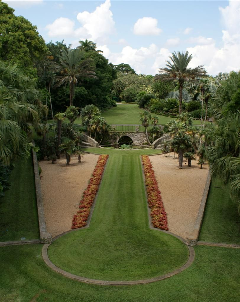 Etonnant Fairchild Tropical Botanic Garden   Bailey Palm Glade One Of The Best  Places On Earth!
