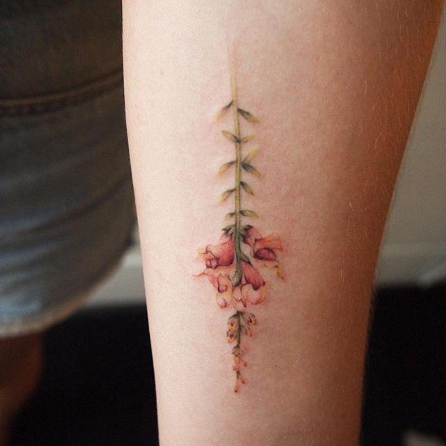 snapdragon | Botanical tattoo, Tattoos, Aesthetic tattoo