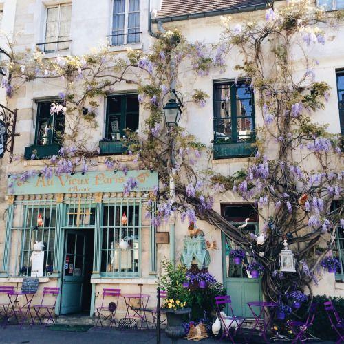 photosbynora: parisian surprises ��