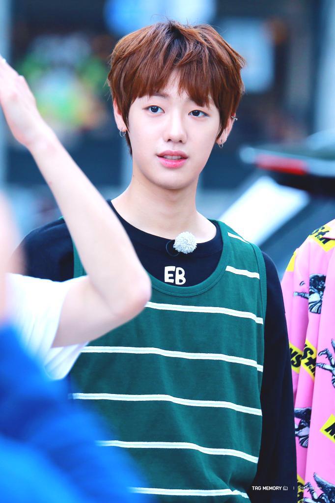 Son Youngtaek Entertainment