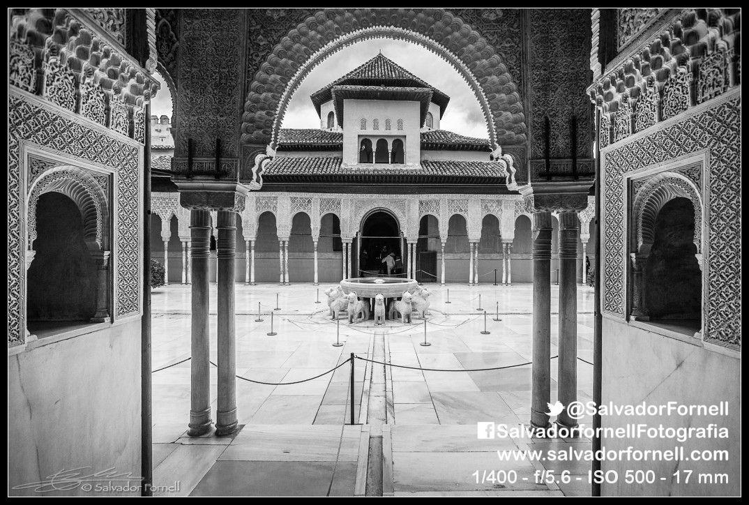 Patio de los Leones. La Alhambra  #laAlhambradeldia 204  http://www.flickr.com/photos/salvadorfornell/8600874148/  www.salvadorfornell.com