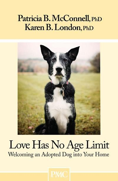 Pin By Vickie Myers Selvidge On Will You Adopt Foster Me Dog
