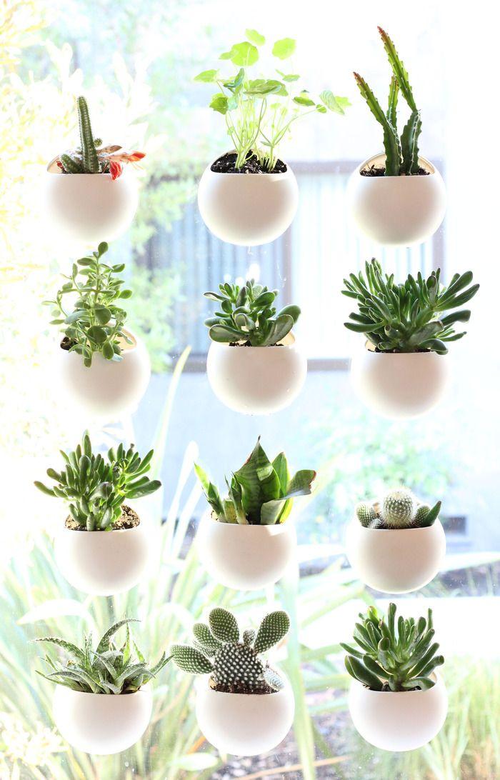 window indoor garden pods Window Pods - The Perfect Indoor Garden by Ben Shope