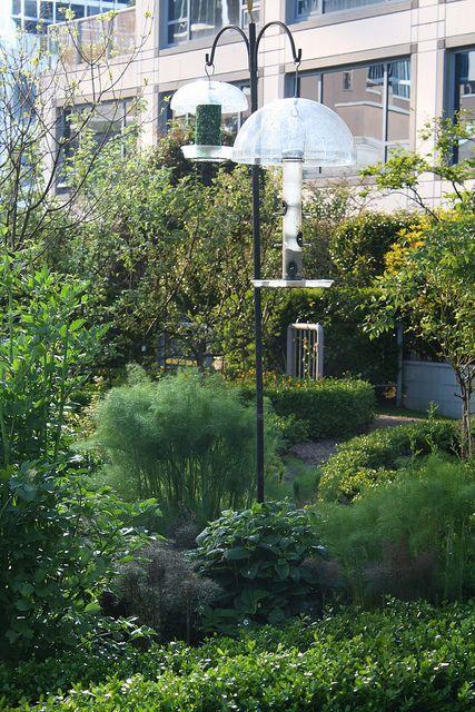 Rooftop garden at Fairmont Waterfront hotel by Sue White Freelance Writer, via Flickr