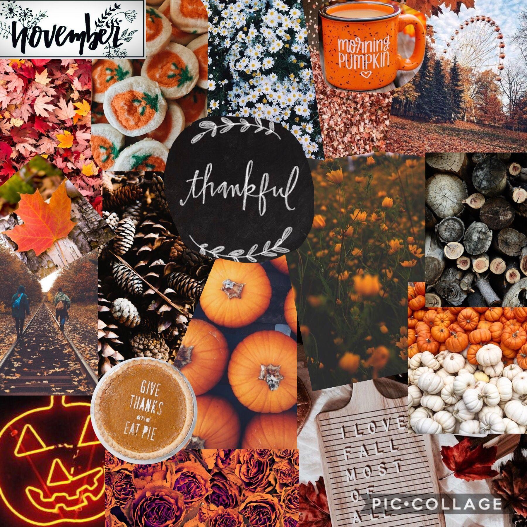 November Aesthetic Collage November Wallpaper Thanksgiving Collage Thanksgiving Wallpaper