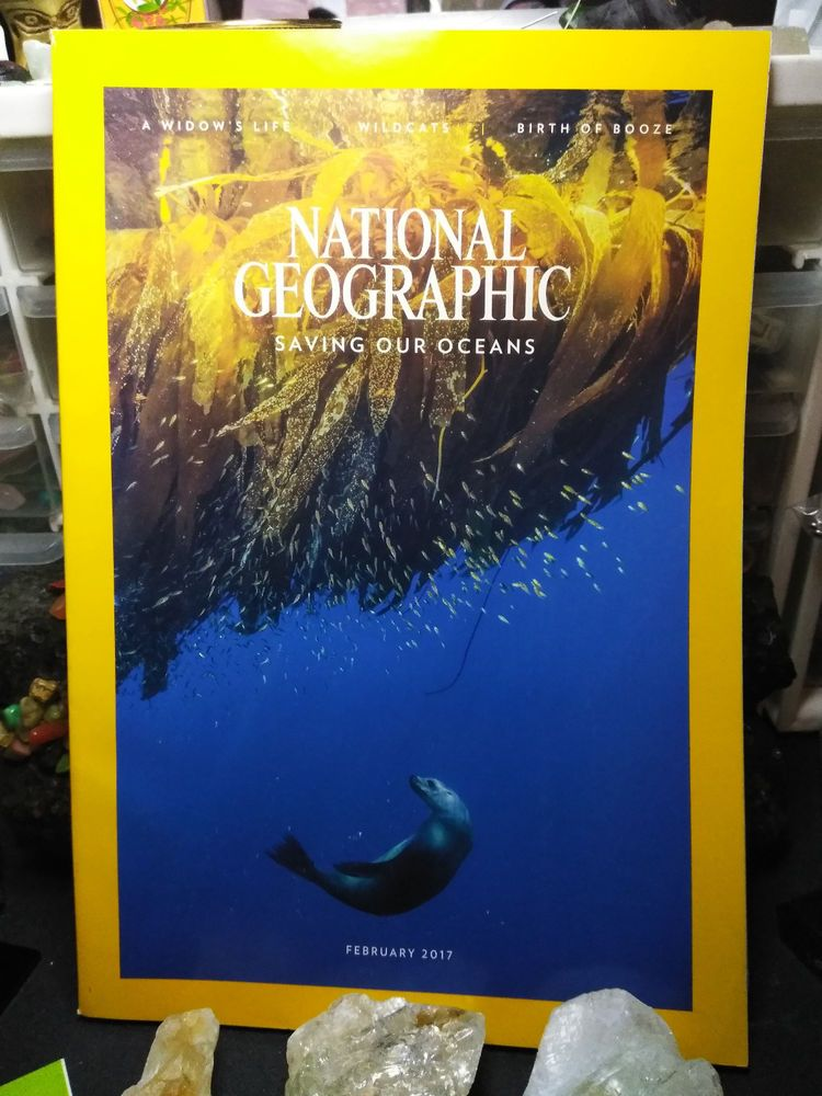 National Geographic Magazine February 2017 Saving our