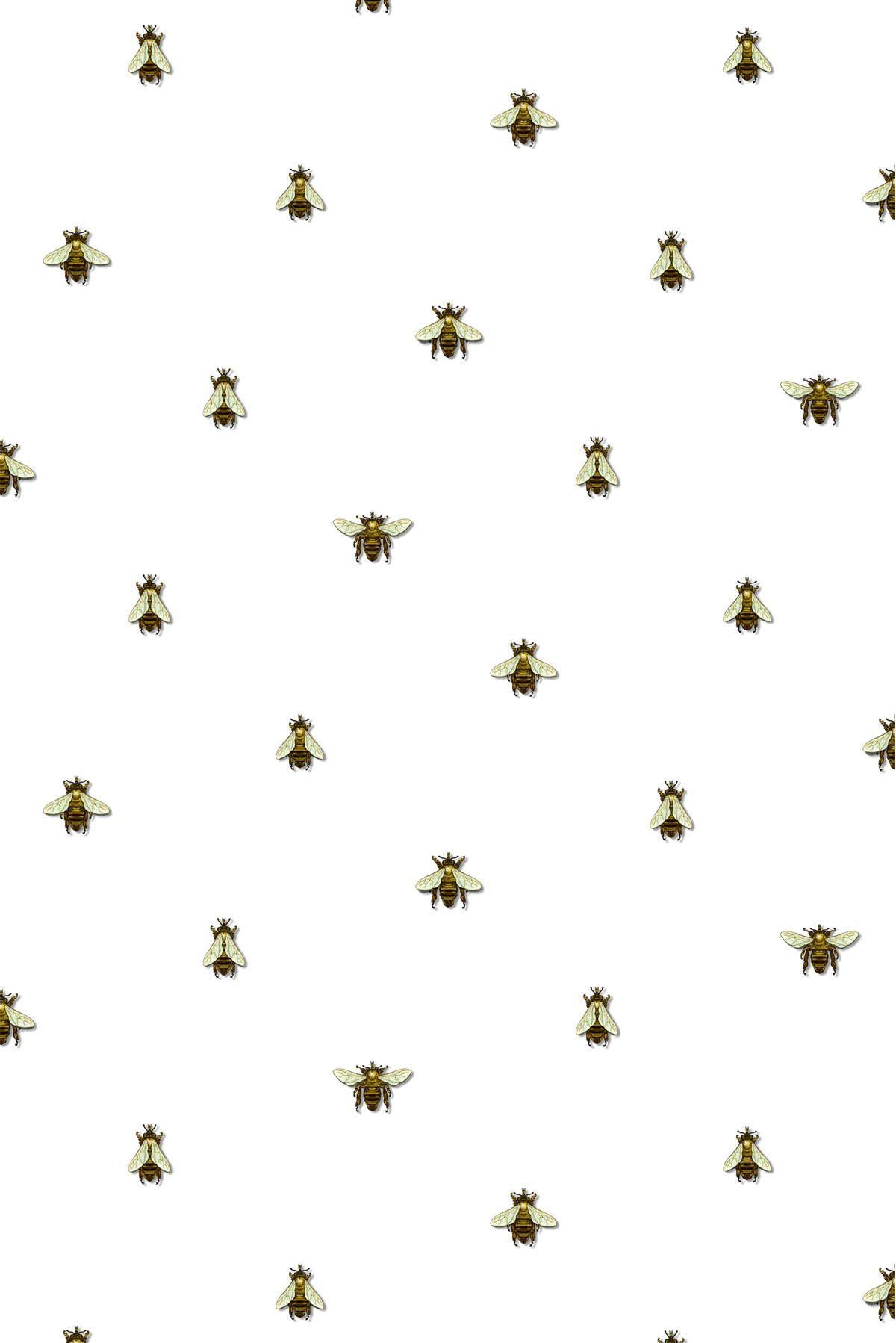 Timorous Beasties Wallcoverings Wild Honey Bee Spot