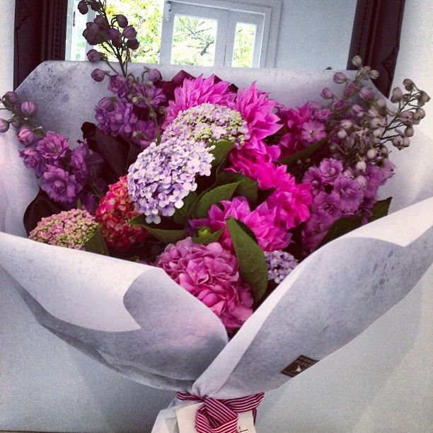 Pin by Rozie Laslow on Flowers - Poseys for Rozie   Pinterest ...