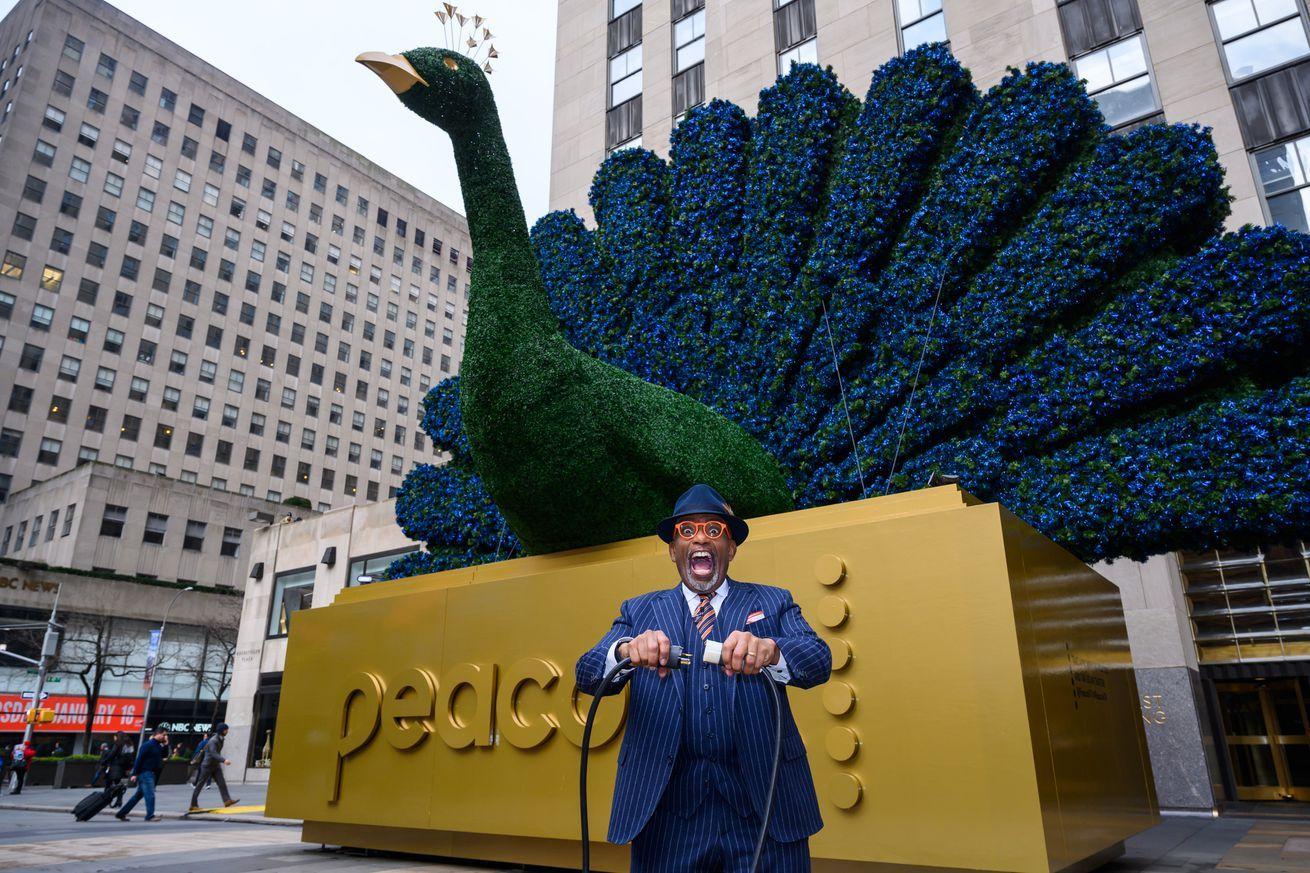 COMCAST'S LOGO USES NBC'S PEACOCK! Logo Design
