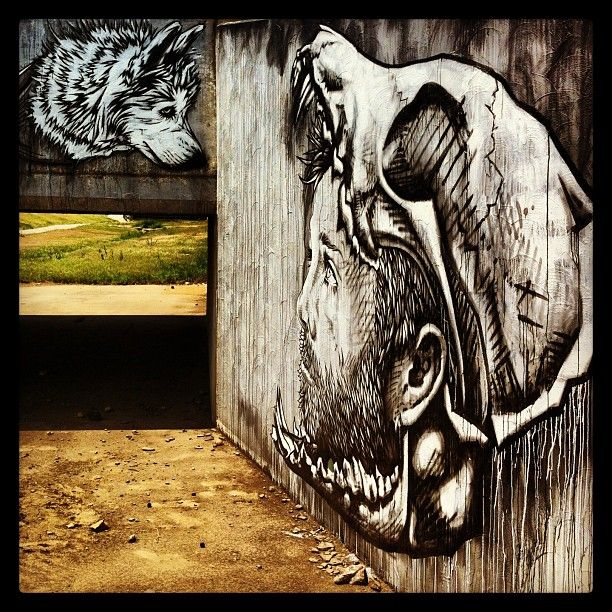 Street Art Wolf!