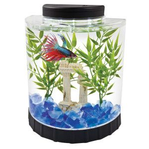 Tetra Led Half Moon Betta Aquarium Aquariums Petsmart Betta Fish Tank Betta Aquarium Betta Fish Bowl