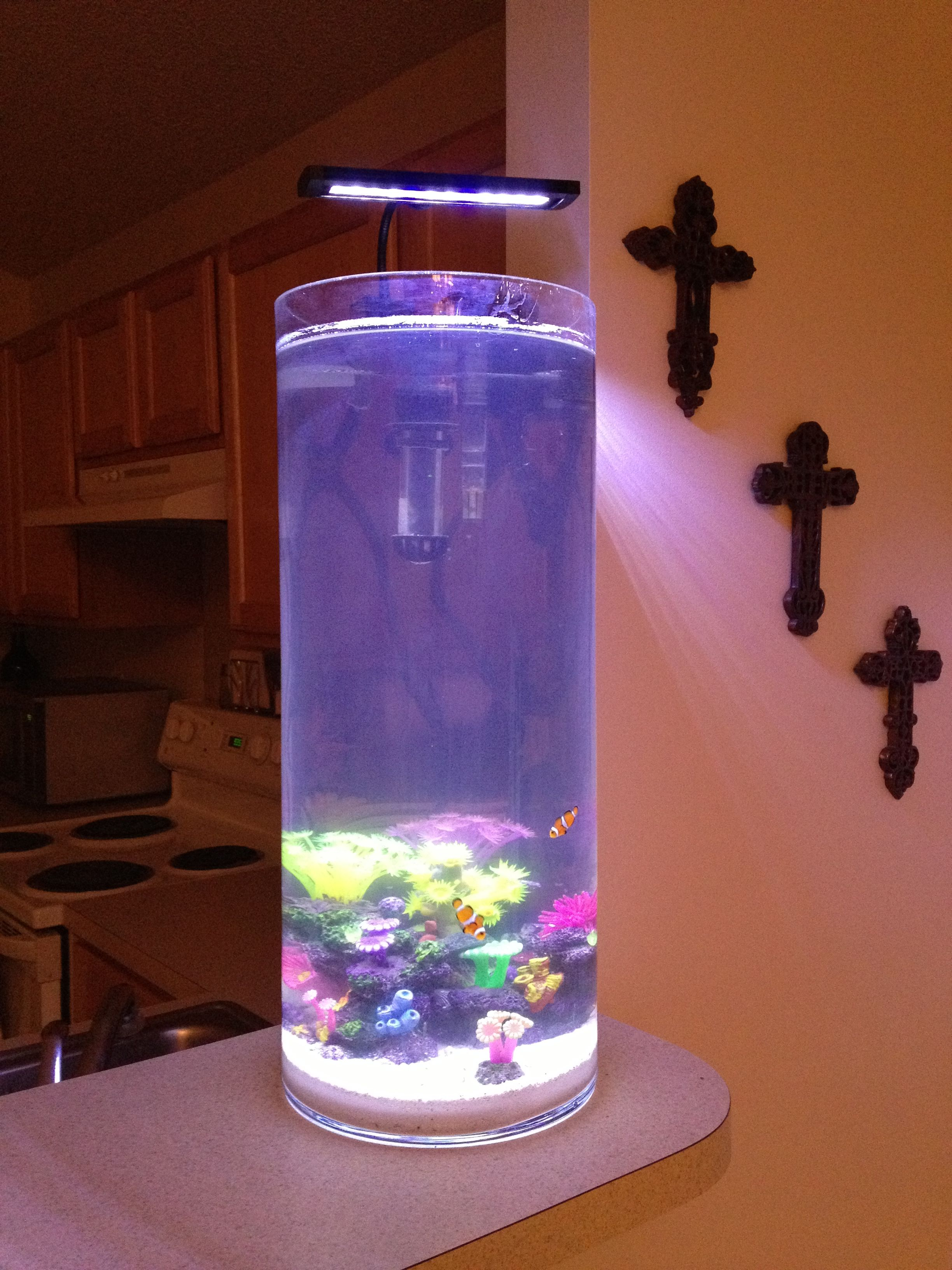 Salt Water Tank! The Tank Is A Vase From Marshallu0027s, With Bright, Fake