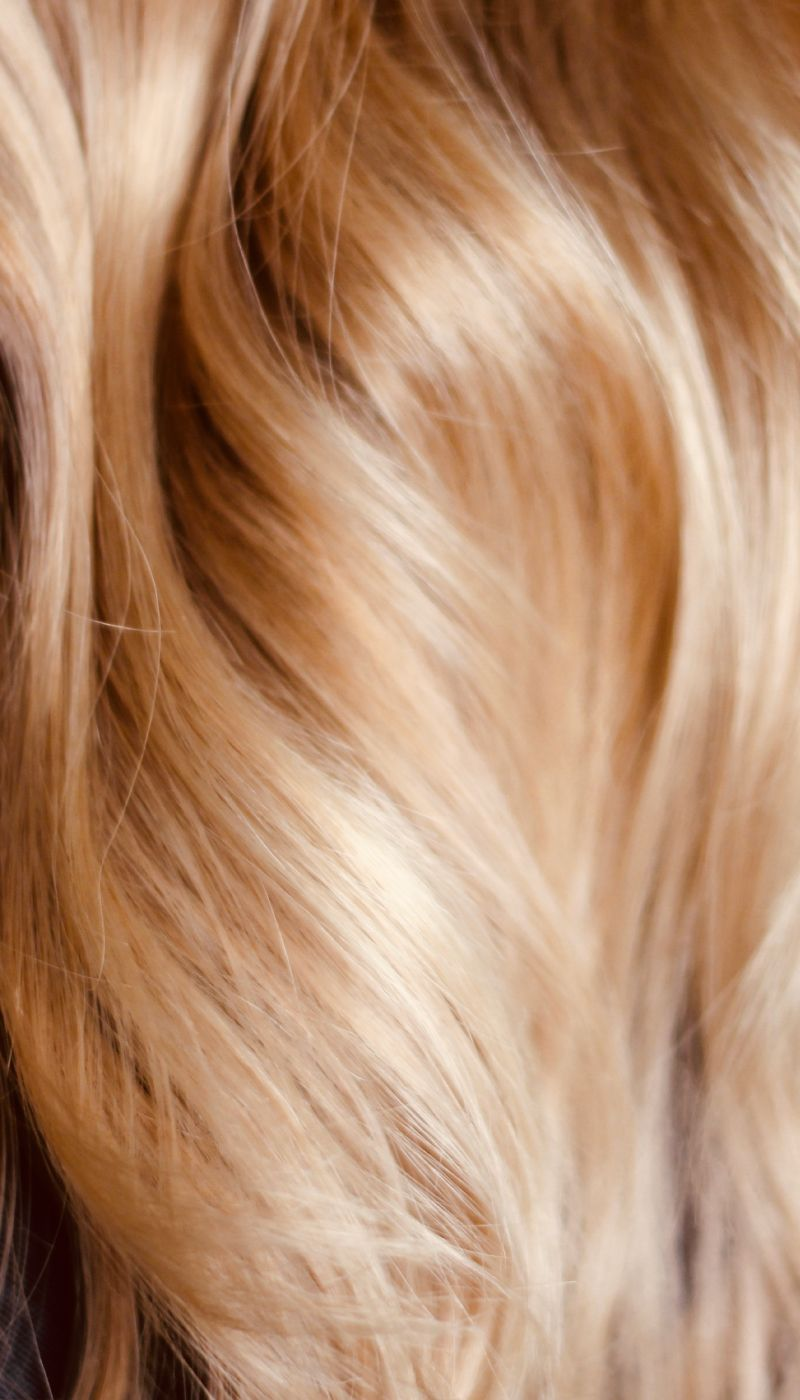 Light Very blonde hair recommend dress in autumn in 2019