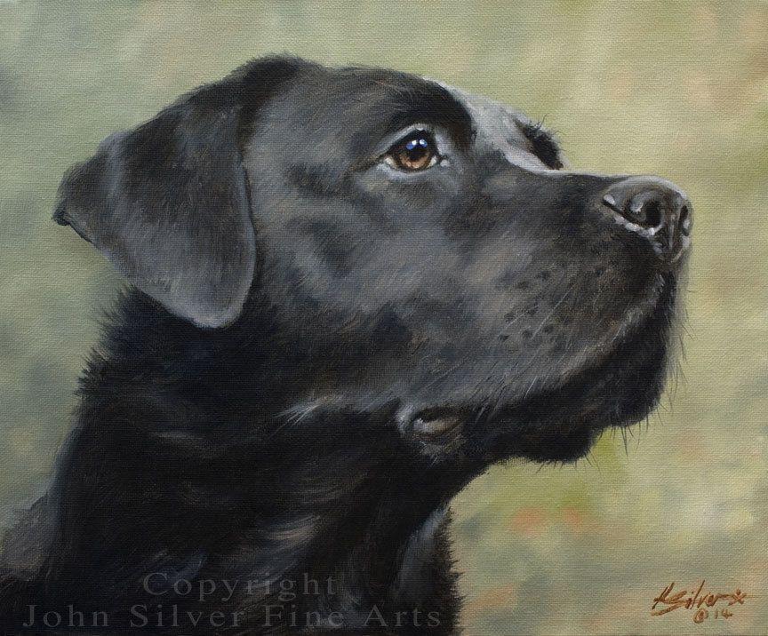 Black Labrador Retriever Original Oil Painting By John Silver Ba Ebay Dog Paintings Dog Portraits Labrador Retriever