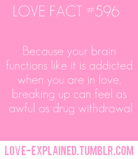 Love facts | Fun facts | Pinterest | Relationships, Psychology and ...
