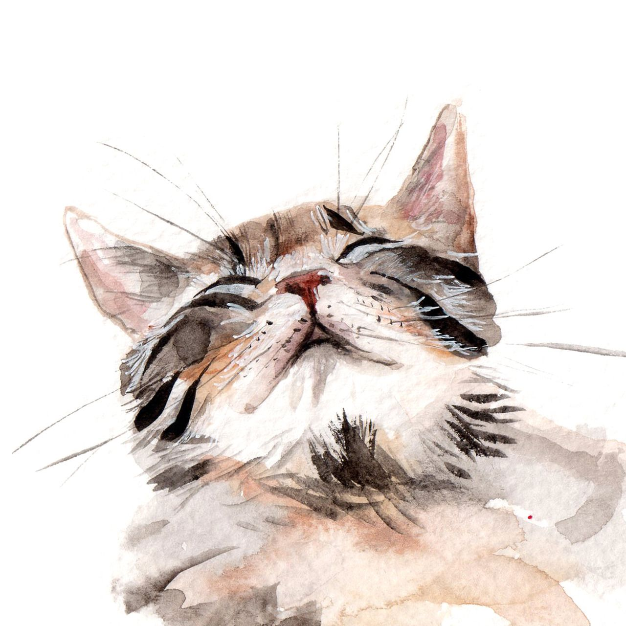 Watercolor Cats Year Ago Filed Under Kitten Sleepy Cat Cats