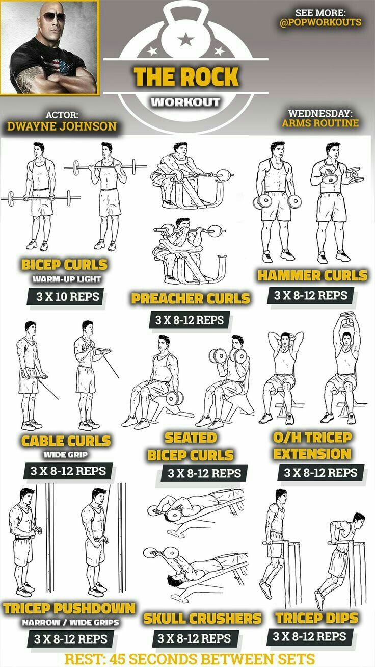 Biceps Triceps Workout