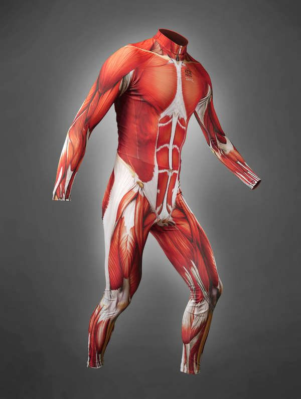 Anatomy Exposing Cycle Suits Cycling Suit
