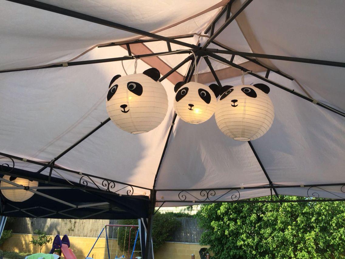 Farolillos de oso panda