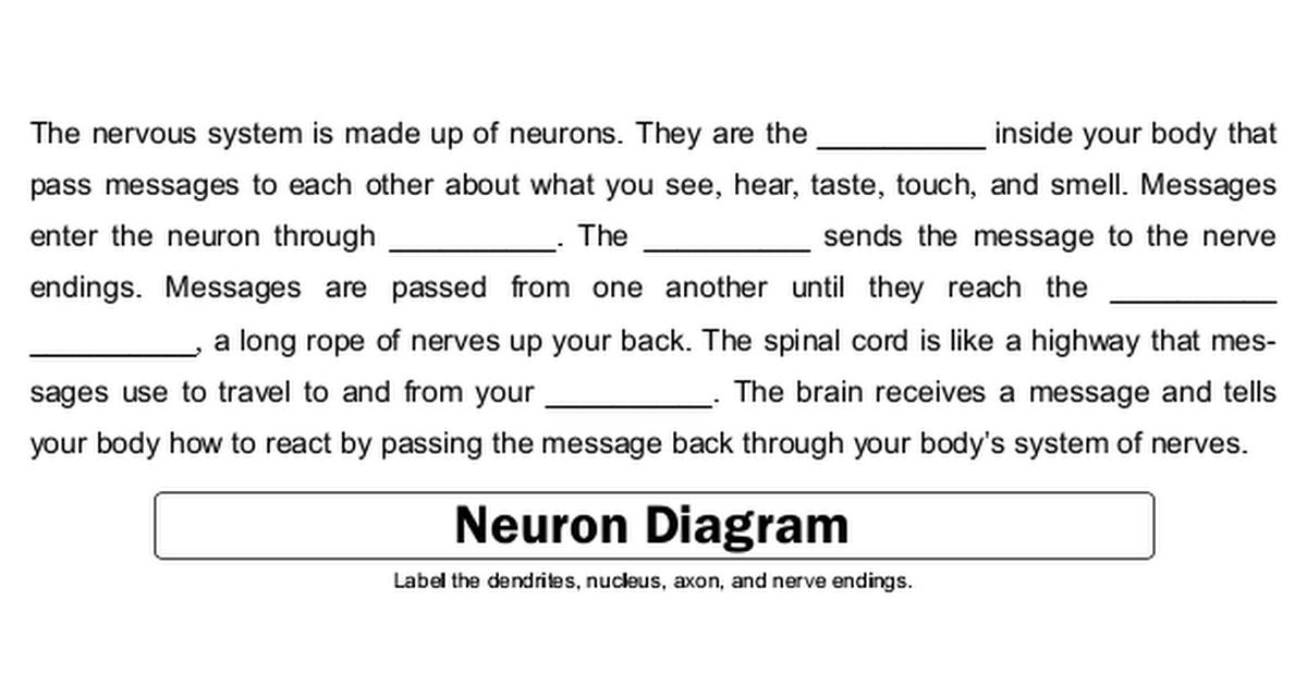 Nervous System.pdf Nervous system, System, Neurons