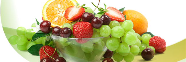 Auckland Auckland Healthy lifestyle, Healthy diet tips