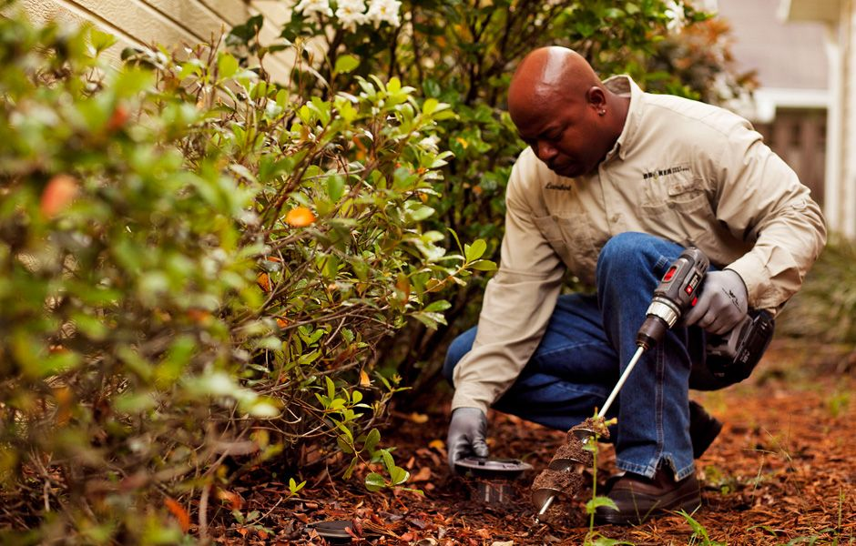 Established in 2011, WATTS Pest Prevention's foundation
