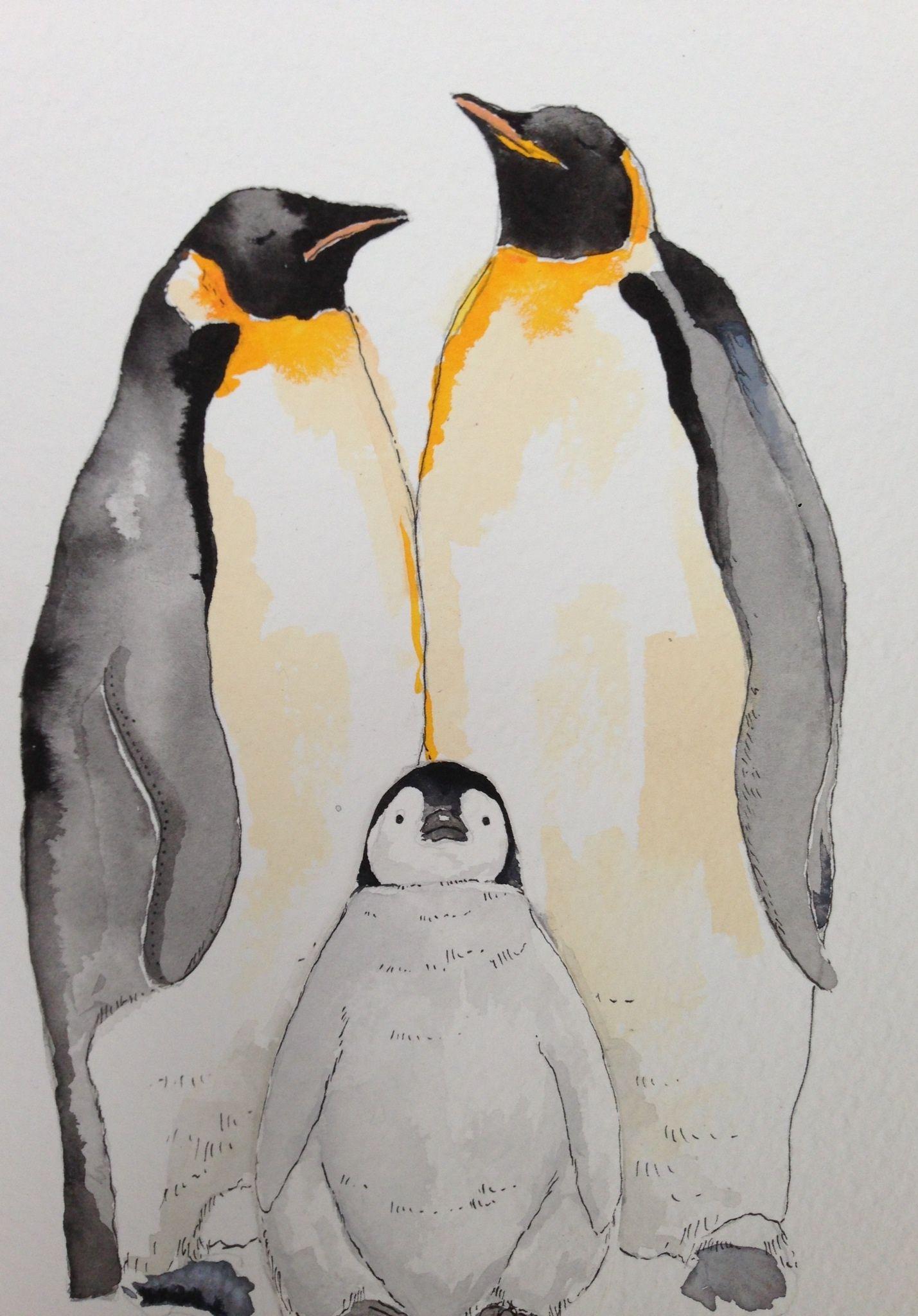 Penguins Penguin Watercolor Watercolor Art Animal Drawings