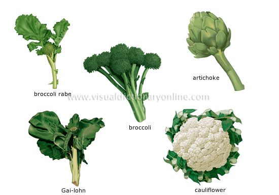 Inflorescent vegetables the flowers or flower buds of edible plants eaten as vegetables food - Flowers not to plant with vegetables ...