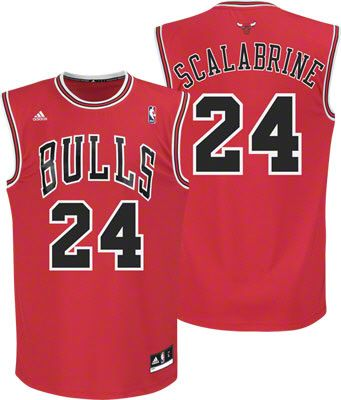 Brian Scalabrine Bulls