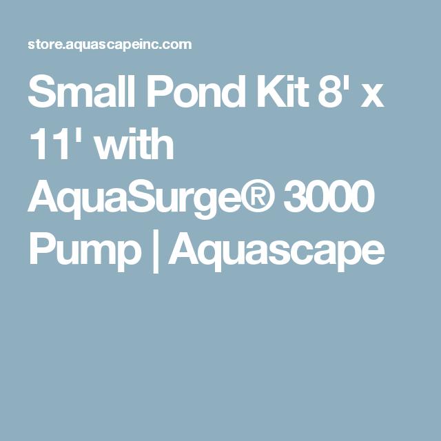 Small Pond Kit 8u0027 X 11u0027 With AquaSurge® 3000 Pump | Aquascape