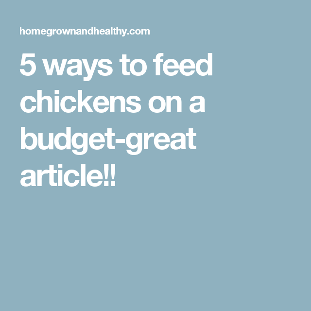 5 ways to feed chickens on a budget-great article!!