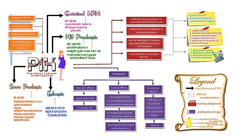 PIH concept map พยาบาล, การศึกษา
