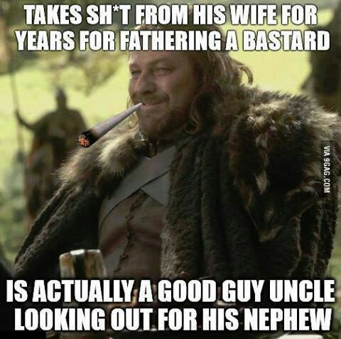 272da92cfd9b54721d4064ac4660b5d7 more of the funniest memes from the 'game of thrones' season
